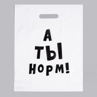 Пакет полиэтиленовый «А ты норм!», 31 х 40 см
